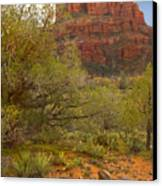 Arizona Outback 3 Canvas Print by Mike McGlothlen