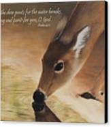 As The Deer Verse Canvas Print by Becky West