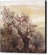 Asian Mist Canvas Print