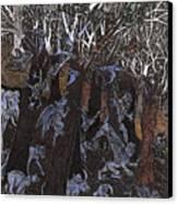 Asil In Shitaki Forest Canvas Print by Al Goldfarb