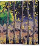 Aspen Colors Canvas Print