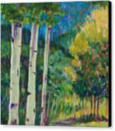 Aspen Trails Canvas Print by Billie Colson