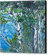 Aspens Canvas Print by Kenny King