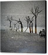 Asphalt Oasis Canvas Print by Sabine Stetson