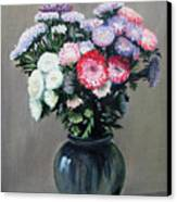 Asters Canvas Print by Paul Walsh