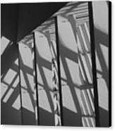 Asylum Windows Canvas Print