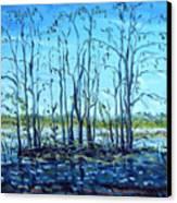 At Loxahatchee Canvas Print