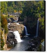 Ausable Falls Canvas Print
