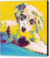 Aussie Puppy-yellow Canvas Print by Jane Schnetlage