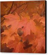Autumn 2 Canvas Print