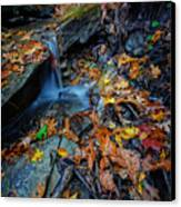 Autumn At A Mountain Stream Canvas Print by Rick Berk