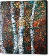 Autumn Birch Canvas Print