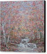 Autumn Birch Trees. Canvas Print
