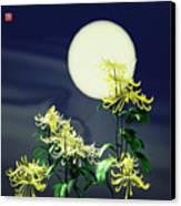 Autumn Chrysanthemums 2 Canvas Print by GuoJun Pan