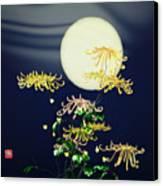 Autumn Chrysanthemums 4 Canvas Print by GuoJun Pan