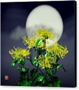 Autumn Chrysanthemums Canvas Print by GuoJun Pan