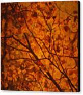 Autumn Colours Canvas Print by Stuart Deacon