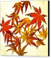 Autumn Flury Canvas Print by Rebecca Cozart