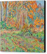 Autumn Forest Path Canvas Print
