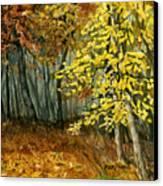 Autumn Hollow I Canvas Print