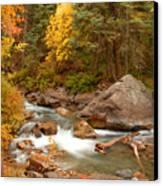 Autumn In Alpine Loop Canvas Print