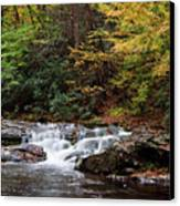 Autumn In The Smokies Canvas Print by Andrew Soundarajan