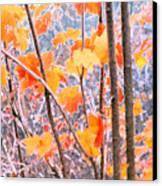 Autumn Leaves 2 Pdae Canvas Print