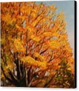 Autumn Leaves At High Cliff Canvas Print by Daniel W Green