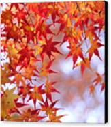 Autumn Leaves Canvas Print by Myu-myu