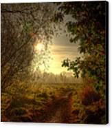 Autumn Mist Canvas Print by Kim Shatwell-Irishphotographer
