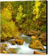 Autumn On Big Cottonwood River Canvas Print