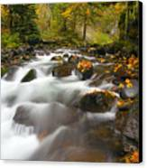 Autumn Passages Canvas Print by Mike  Dawson