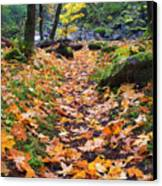 Autumn Path Canvas Print