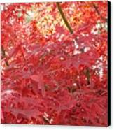 Autumn Red Poster Canvas Print