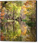 Autumn Reflection On Florida River Canvas Print by Carol Groenen