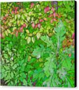 Autumn Splender Canvas Print