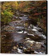 Autumn Stream Canvas Print by Andrew Soundarajan
