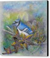 Autumn Sweet Gum With Blue Jay Canvas Print
