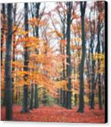 Autumn Whispers I Canvas Print by Artecco Fine Art Photography