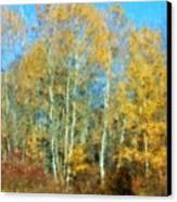 Autumn Woodlot Canvas Print