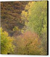 Autumn1 Canvas Print