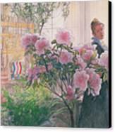 Azalea Canvas Print by Carl Larsson