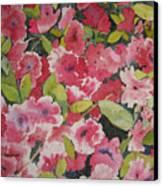 Azalea Medley Canvas Print