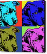 Baby Pit Face Canvas Print by Dean Russo
