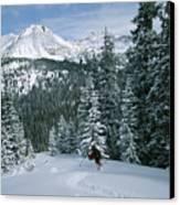 Backcountry Skiing Into An Evergreen Canvas Print