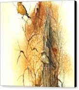 Backyard American Goldfinch Canvas Print