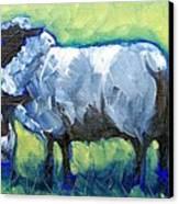 Bah Bah Bah Canvas Print by Sheila Tajima