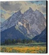 Balsamroot In Bloom Canvas Print