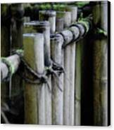 Bamboo Fence Canvas Print by Samantha Kimble