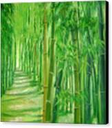 Bamboo Paths Canvas Print